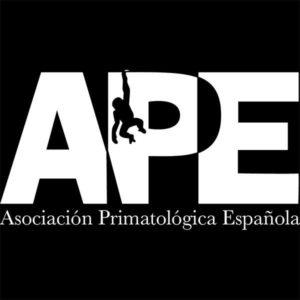APE Spain logo